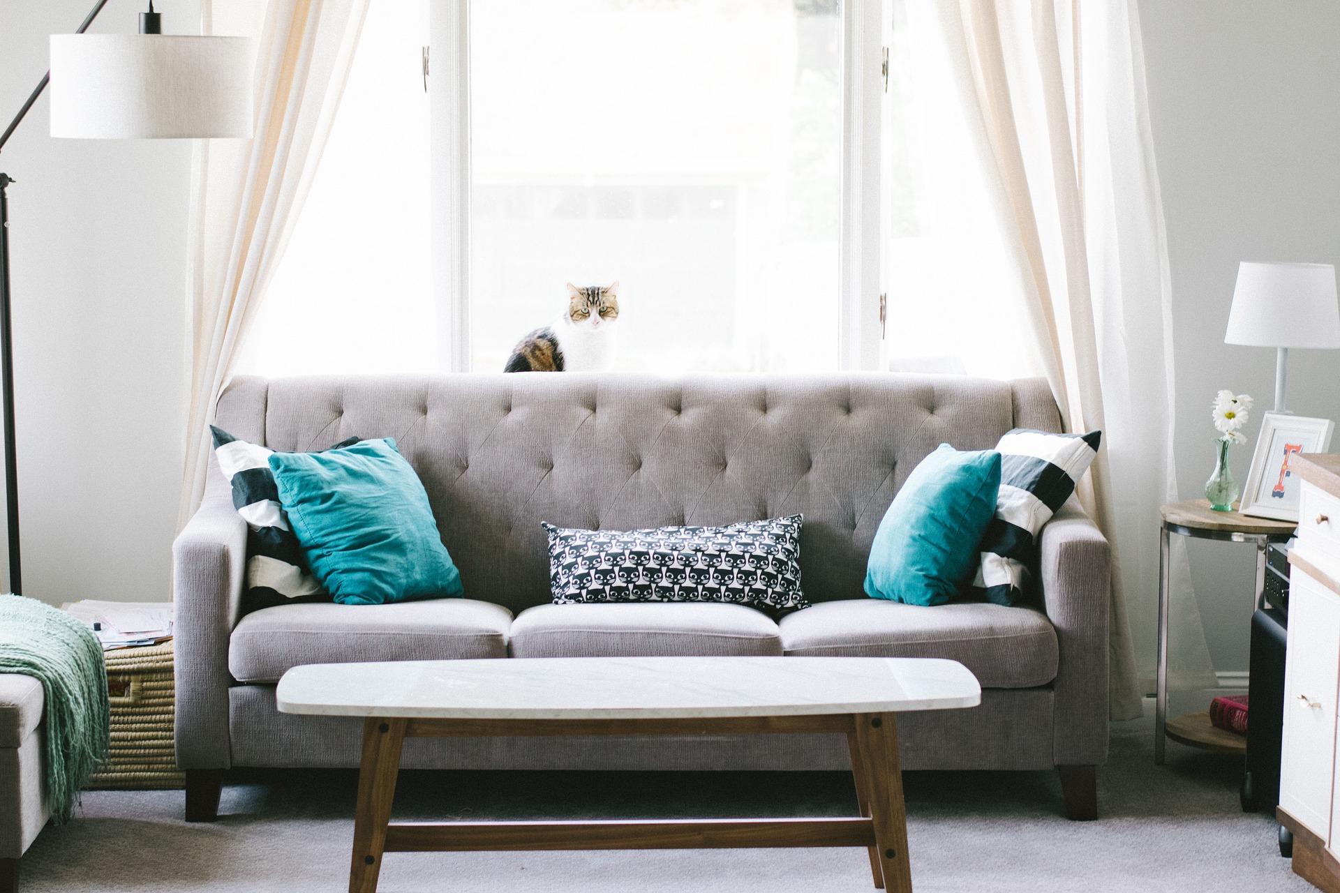 investir-location-meublee-avantages-obligations-bertrand-demanes