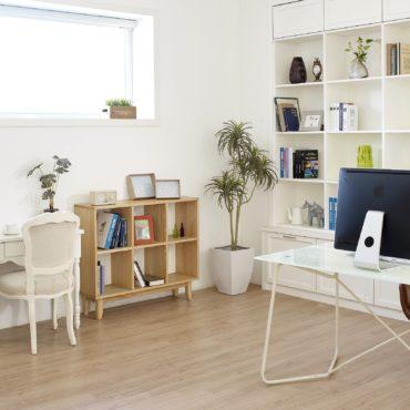location-meublee-attire-investisseurs-actualite-bertrand-demanes