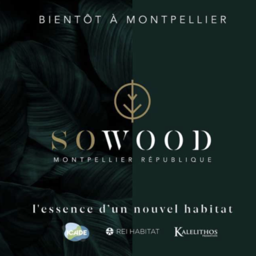 so-wood-montpellier-pinel-programme-actualite-bertrand-demanes
