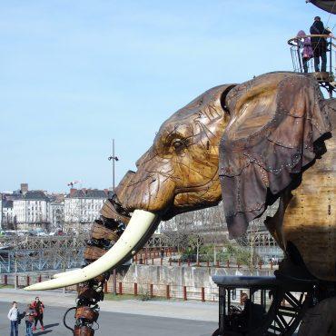 investissement-immobilier-nantes-beaulieu-actualite-bertrand-demanes