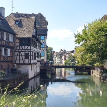 molsheim-marche-de-report-pour-strasbourgeois-actualite-bertrand-demanes
