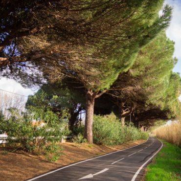 futur-reseau-express-velo-642-km-nantes-actualite-bertrand-demanes