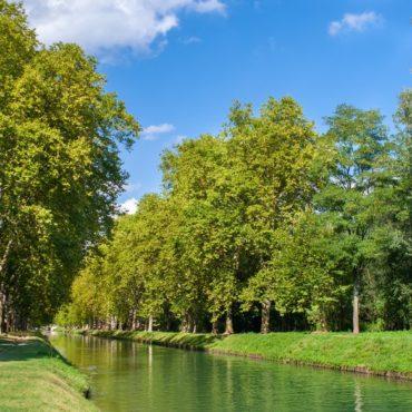 eco-quartier-prairies-du-canal-illkirch-graffenstaden-actualite-bertrand-demanes